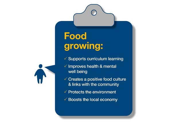 Food growing - the wider benefits
